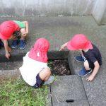 【4・5歳児】小学校グラウンドにて
