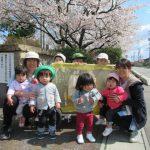 [1歳児]つぼみ2 お花見散歩