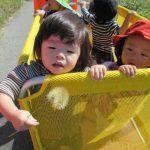 【0歳児】お散歩&流行りのボーダー大集合